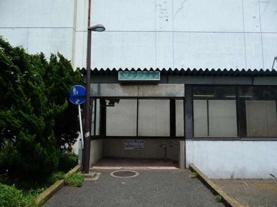 P1100398.jpg